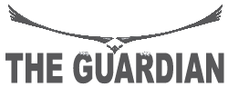 Guardian magnetic sweeper